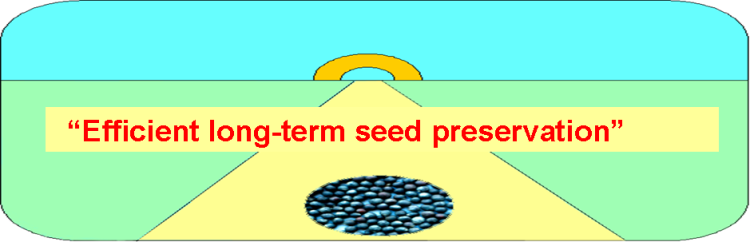 Efficient long-term seed preservation logo